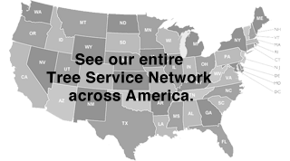 Nationwide Tree Services Locations